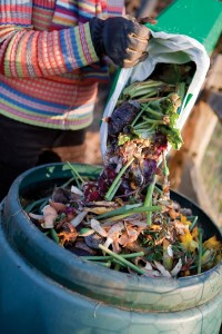 curious_composting-is9013928web