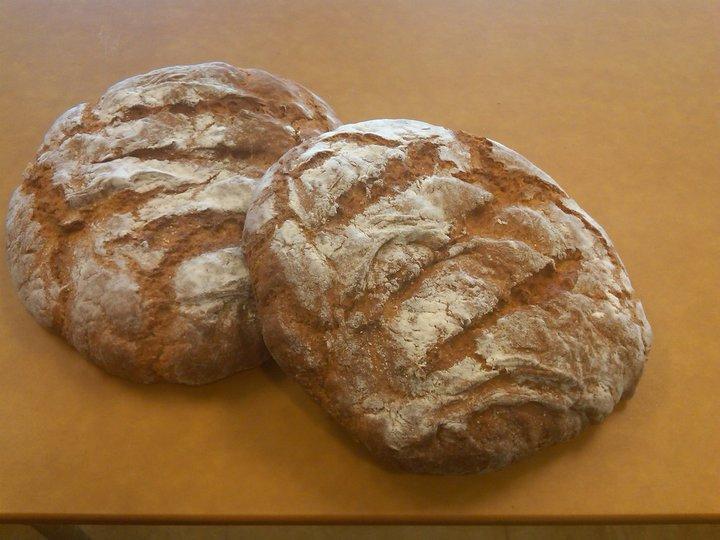 iaia_Navajo_Wild_Sage_Bread