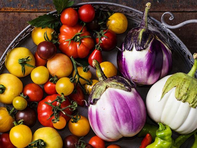 dreamstime_xxl_74173582_nightshades_tomatoes_eggplant_peppers_970y546
