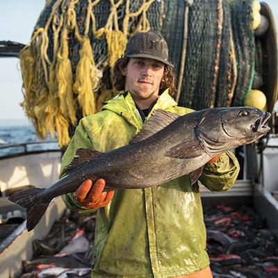 groundfish_usedwithpermission_400x400