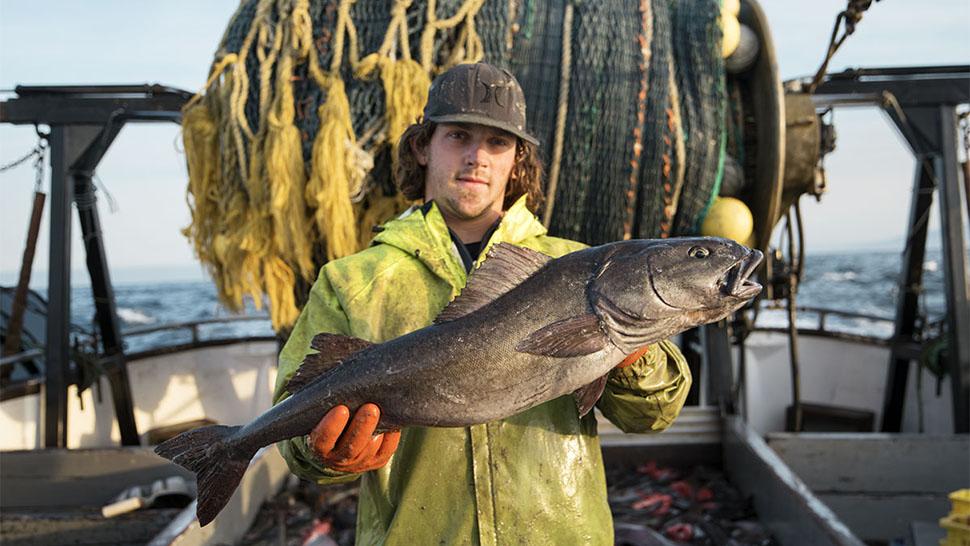 groundfish_usedwithpermission_970x546