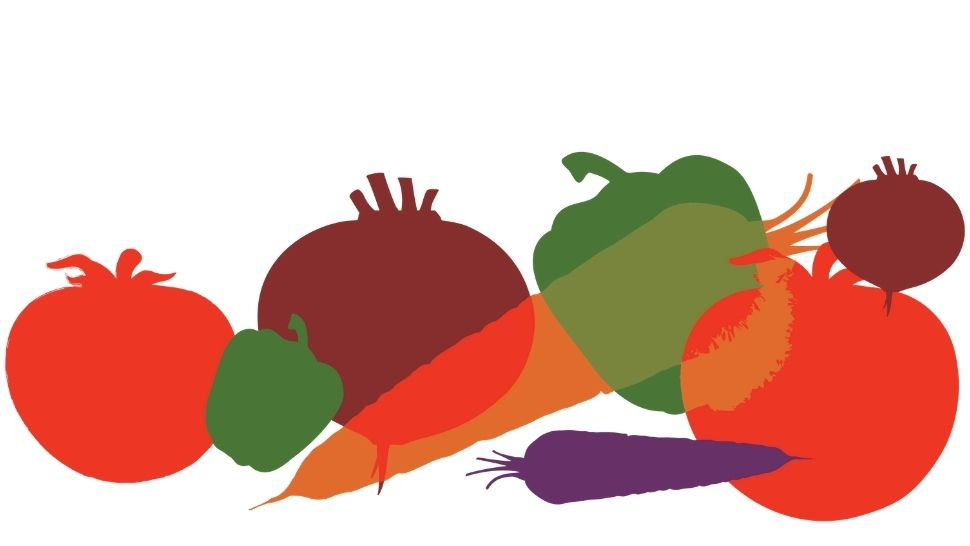 colored vegetable graphics on a white background